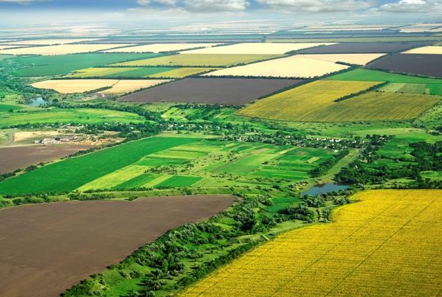 Противуставно е странски лица да не можат да стекнуваат право на сопственост на земјоделско земјиште – ИЗДВОЕНИ МИСЛЕЊА НА СУДИИТЕ ГАБЕР-ДАМЈАНОВСКА И МУРАТИ
